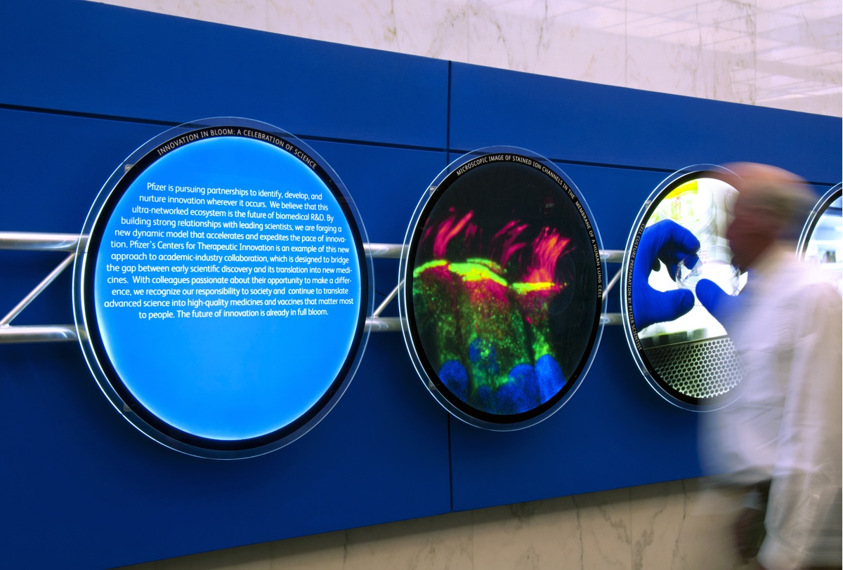 Project Image for Pfizer, Exhibit