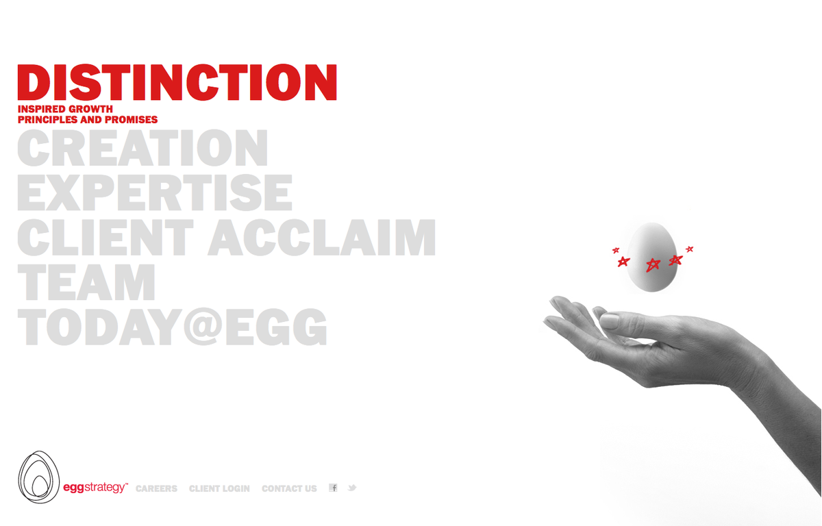 Project image 1 for Website, Egg Strategy