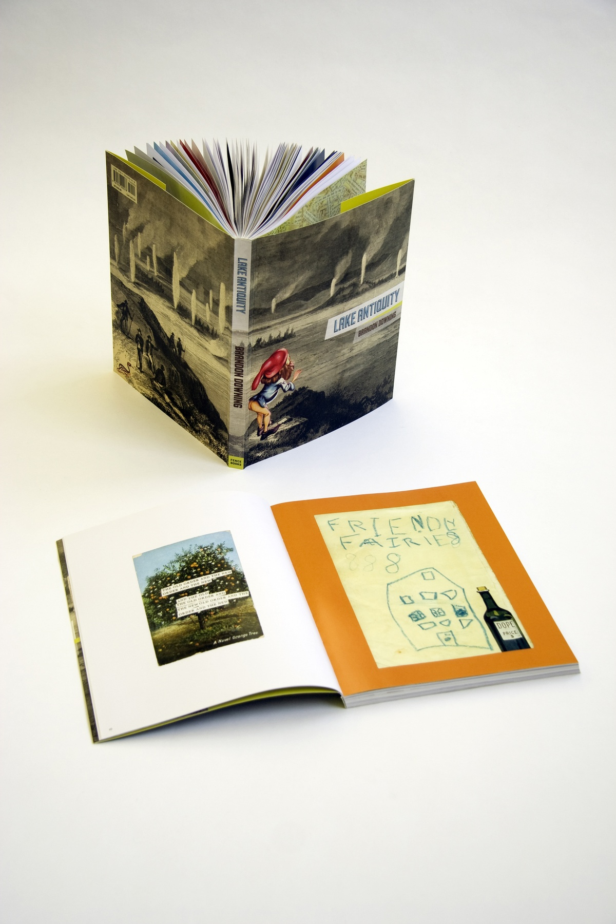 Project image 2 for Lake Antiquity, Fence Books