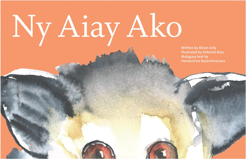 Sappi_Ideas that Matter_Ako the Aye-Aye
