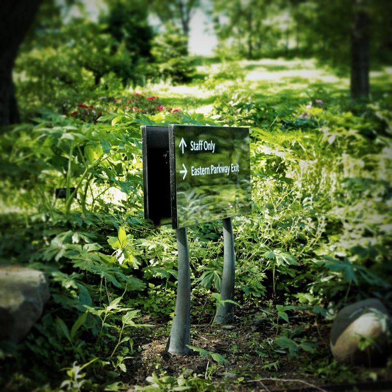 Cover image for Brooklyn Botanic Garden - Signs & Wayfinding