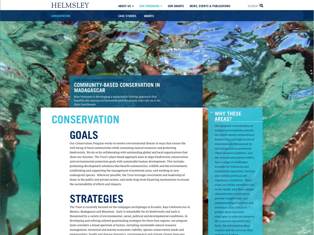 Project Image for Websites, Helmsley Charitable Trust
