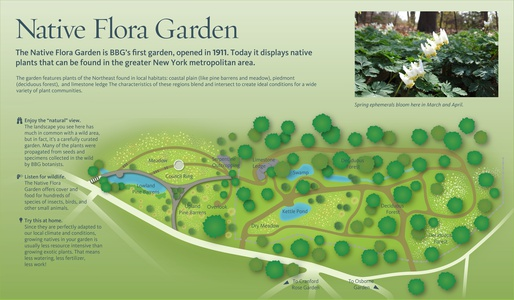 Brooklyn Botanic Project Image NFG