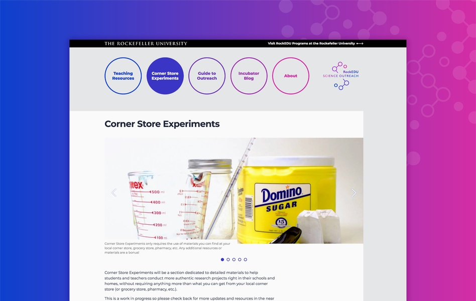 science and education web design