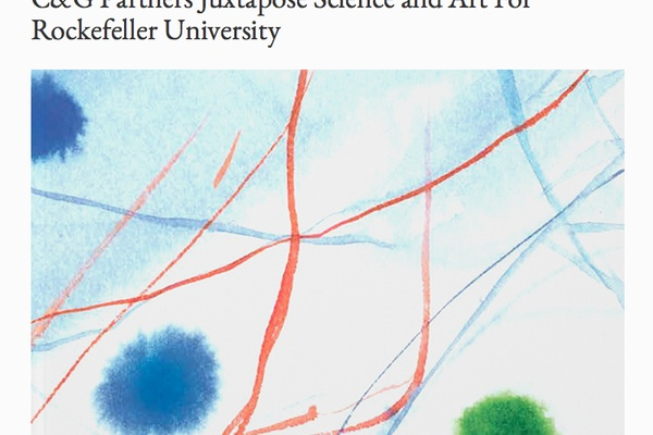 Fresh Press: Rockefeller University's Bioscience Becomes Modern Art