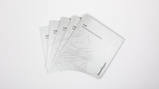 Higher Education Annual Report Design