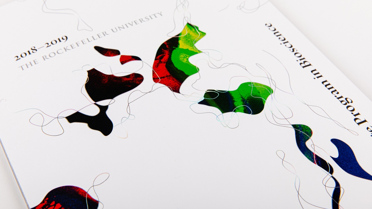 Higher Education print design