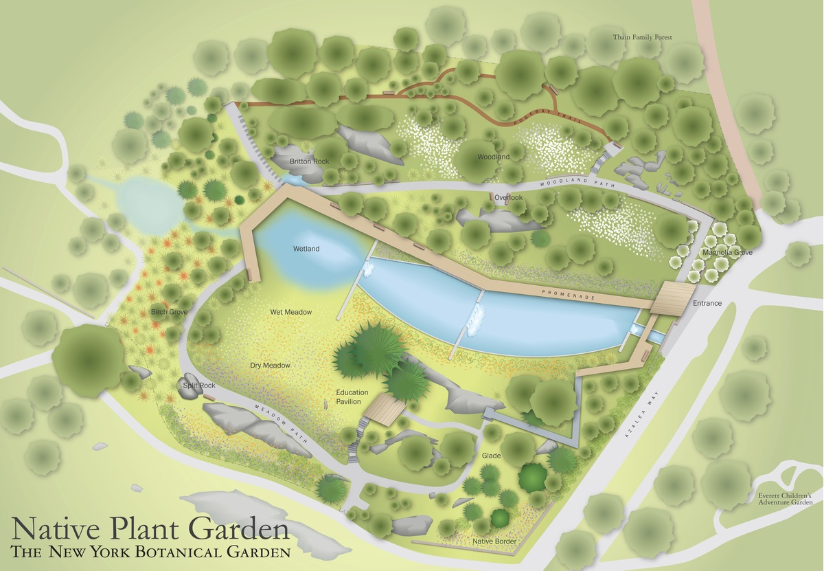 Project image 2 for Mapping, New York Botanical Garden