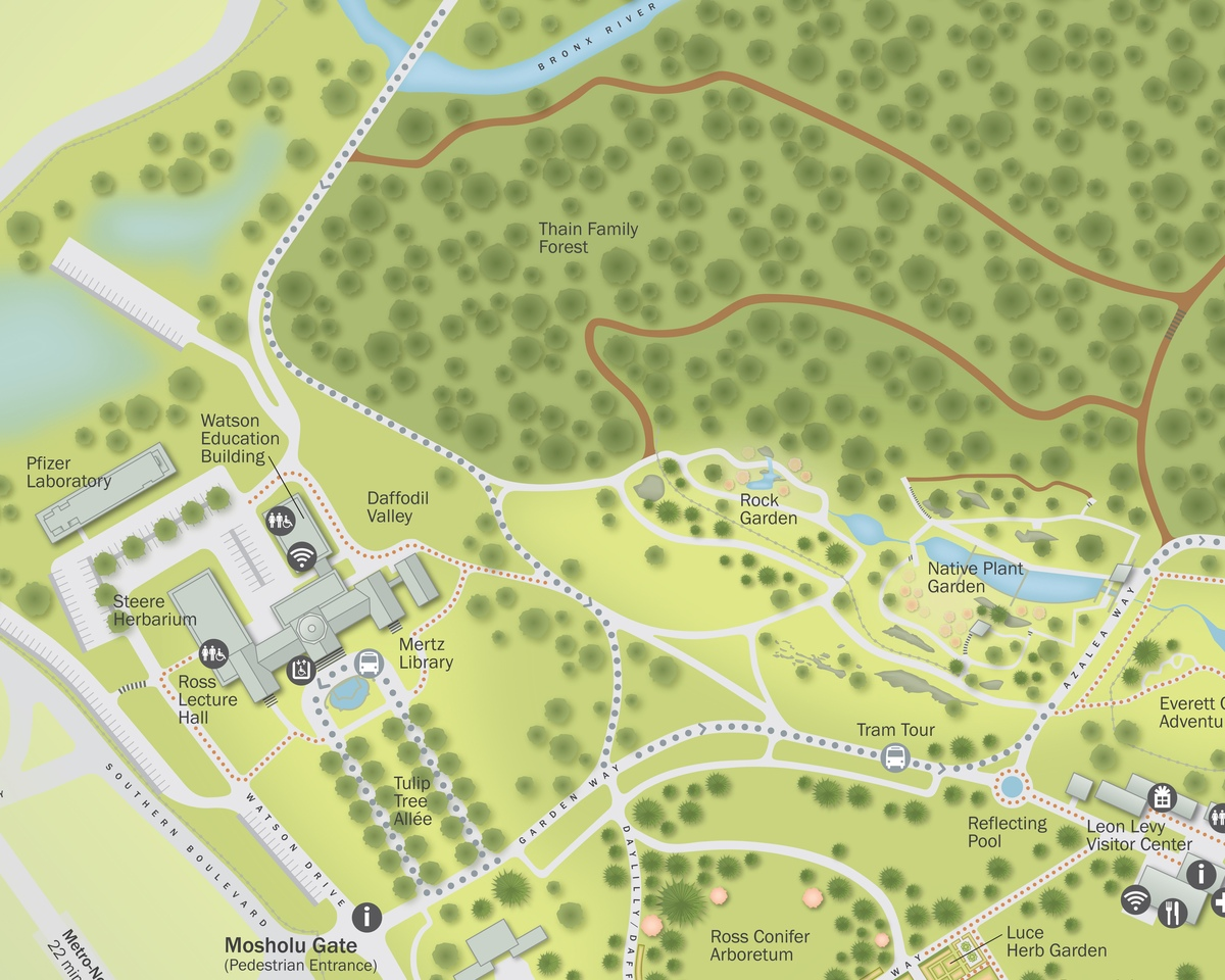 Project image 3 for Infographics, New York Botanical Garden