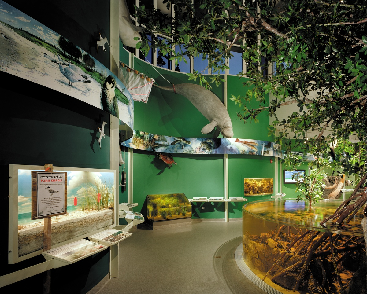 Project image 1 for Exhibits at Rookery Bay National Estuarine Reserve, National Oceanographic and Atmospheric Administration
