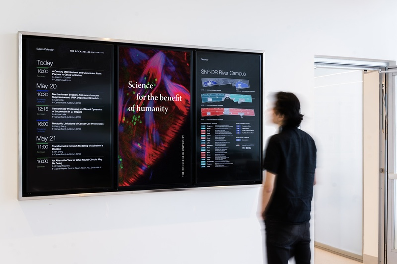 Digital Signage Higher Ed